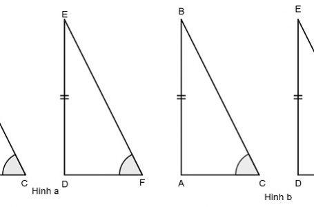 Giải toán về trường hợp bằng nhau thứ ba của tam giác góc cạnh góc